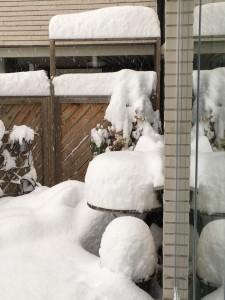 extremt-vinter-och-valklimat